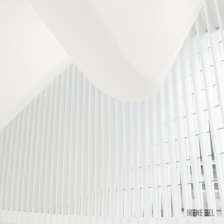 architecture-oculuse-irene-bel.jpg