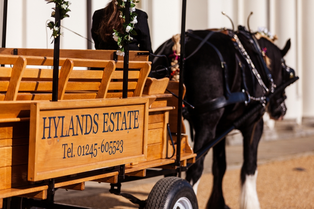 Wedding Horse & Cart