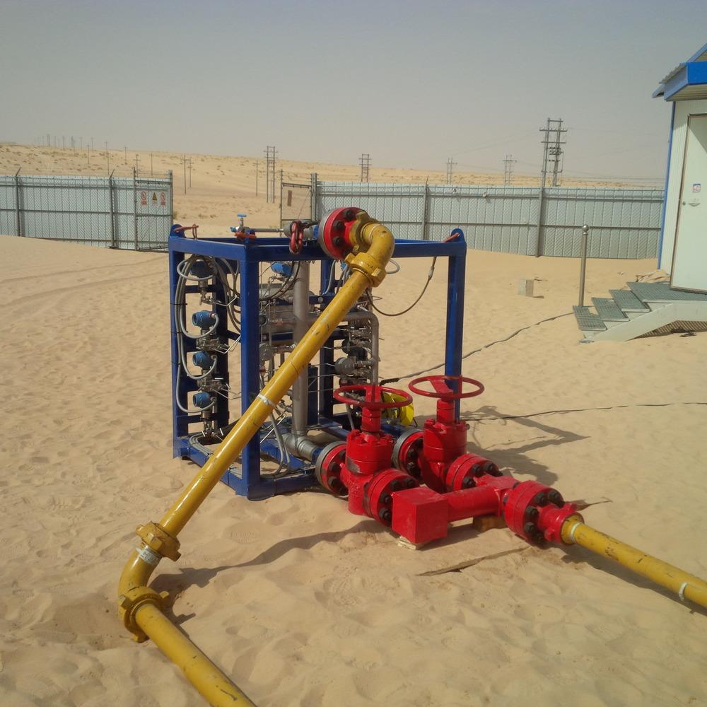 Dual RangeMPFM installation, Niger 2014