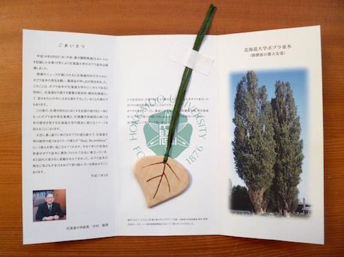北大ポプラ並木再生支援記念品