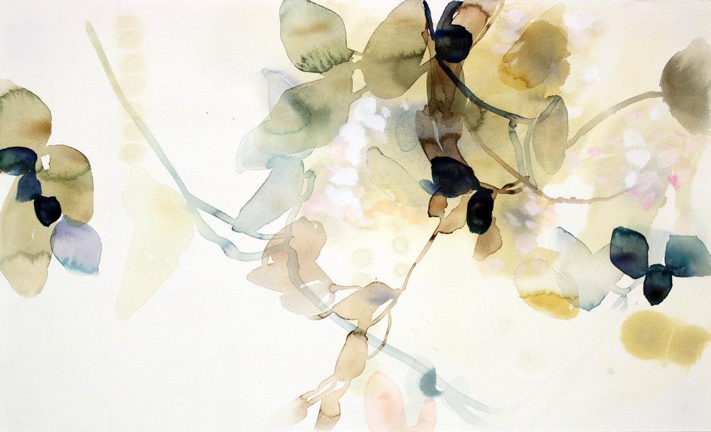 Native Spring 4