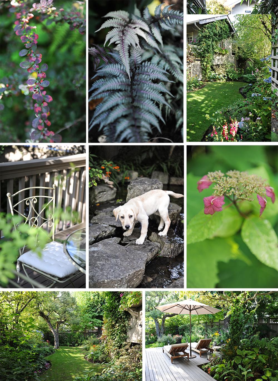 Canadian Gardening Tracey Ayton Photography