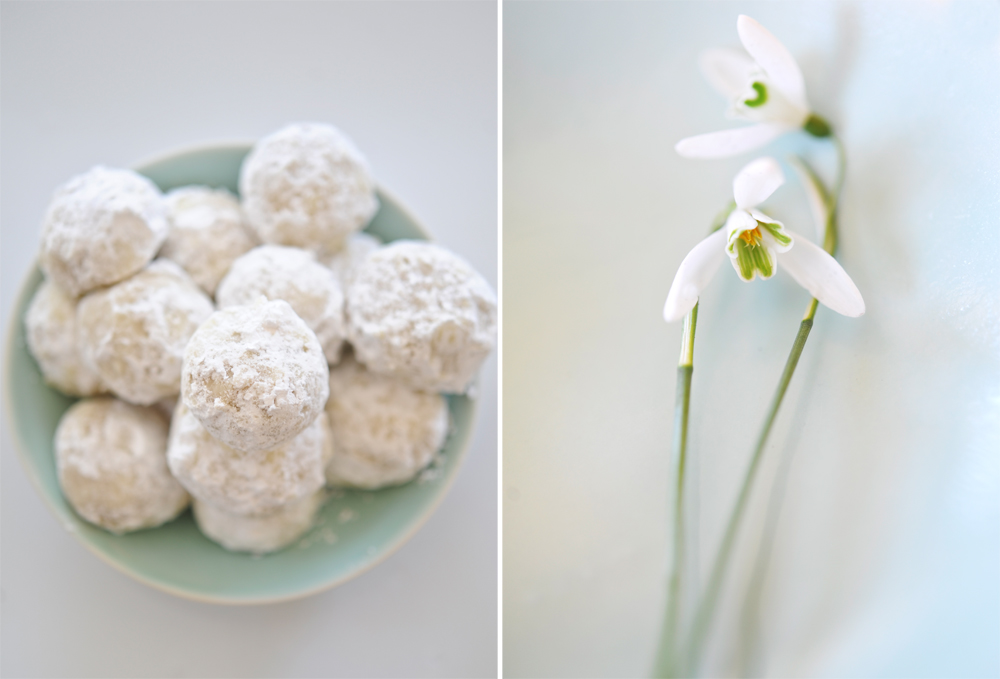 Tracey Ayton Photography Snowdrop Cookies