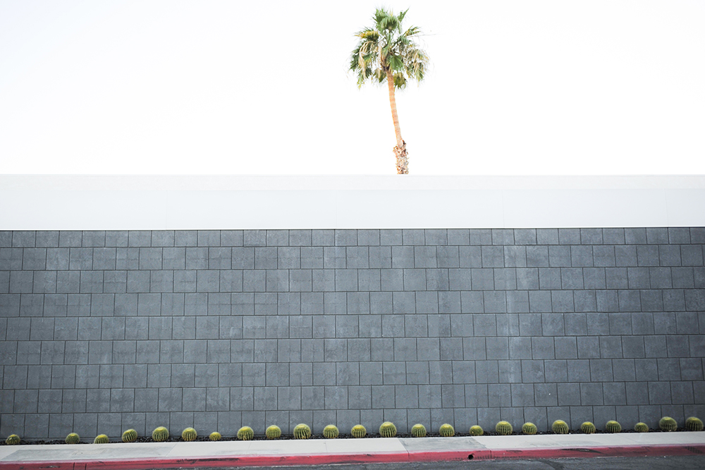 Big Grey Wall Palm Springs Tracey Ayton Photography