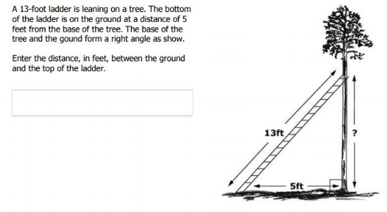 SBAC TEST  -  8th grade Pythagorean Theorem sample