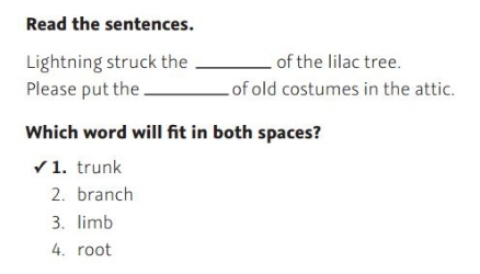 NWEA Practice Test 3rd Grade Test - Complete Sentence sample
