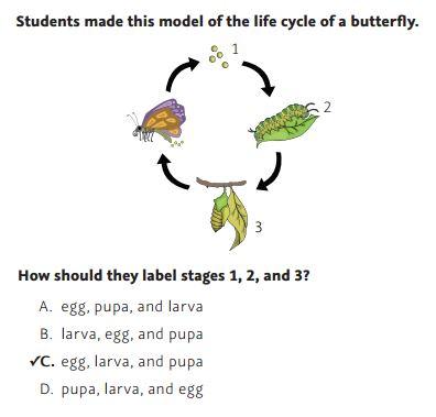NWEA Practice Tests -Life Science sample