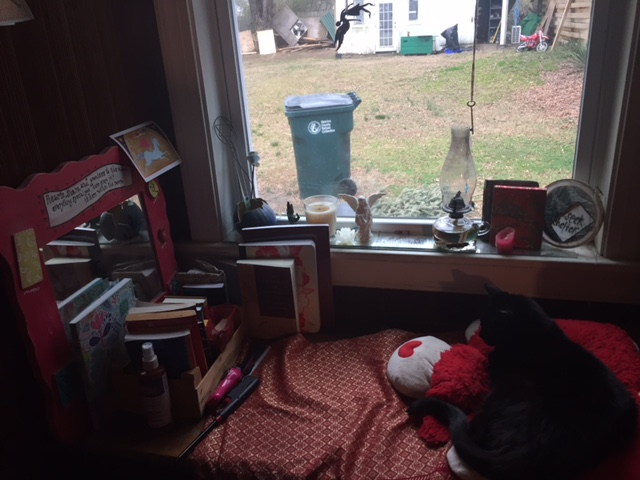 Still Life in Meditation Nook With Cat and Trashcan, 2/3/17.