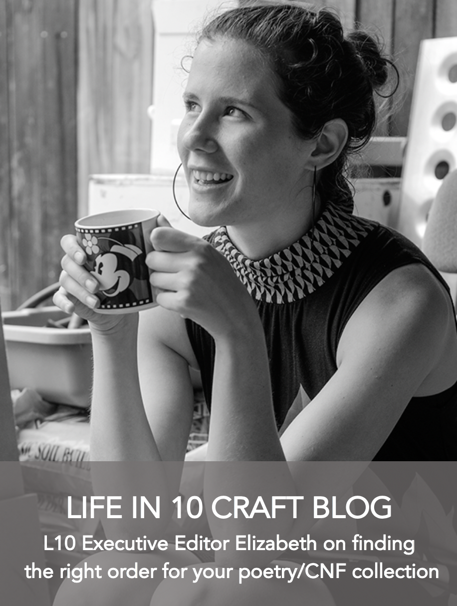 Executive Editor Elizabeth Ferris Craft Blog Arranging CNF Collection