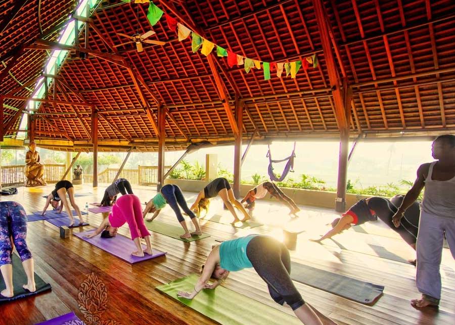 down-dog-yoga-sun.jpg