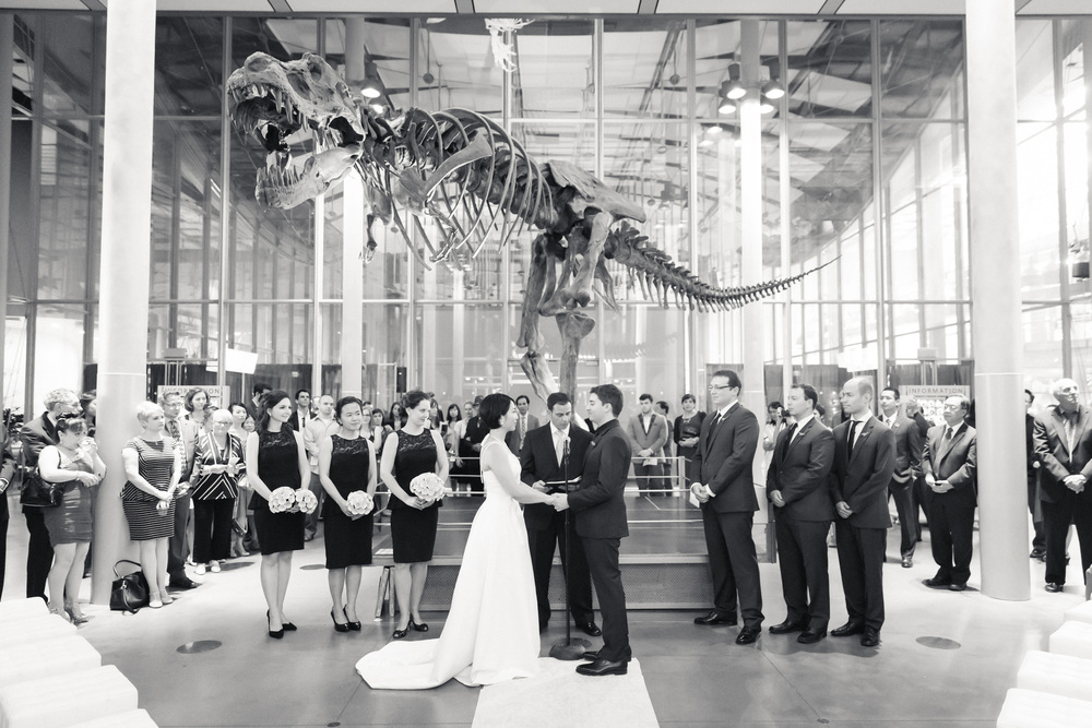 Getting married under the T-Rex