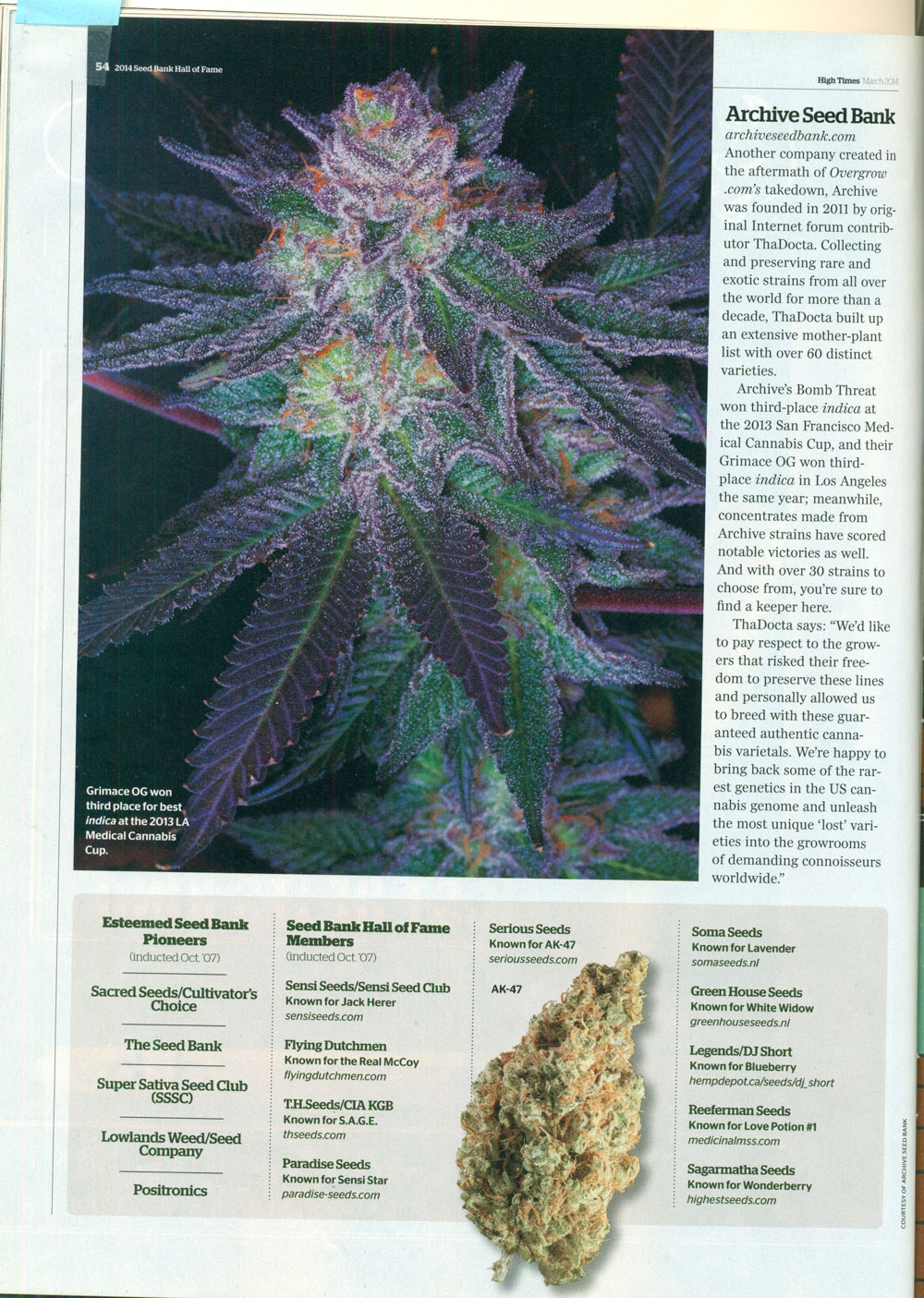High-Times-March-2014_Best-Seeds-Bank.jpg