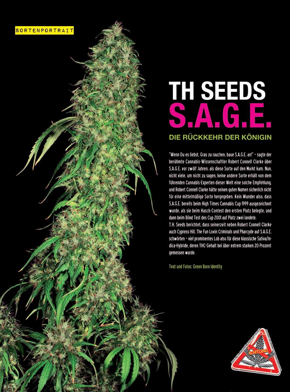 SAGE_TH-Seeds-201202-1.jpg