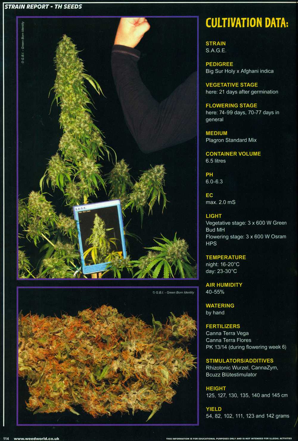 weedworld_2012_p6.jpg