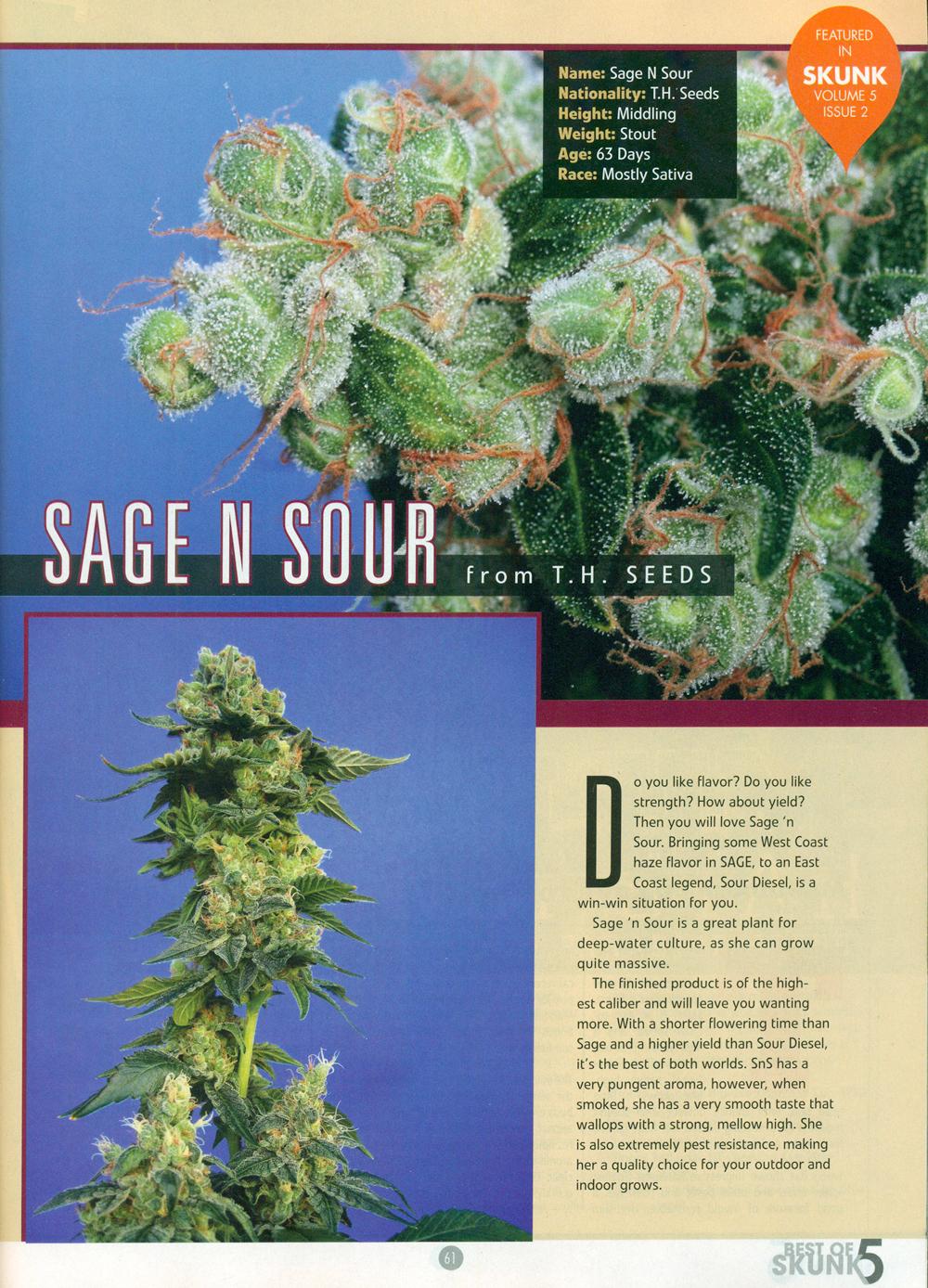 sage+sour-MILF.jpg