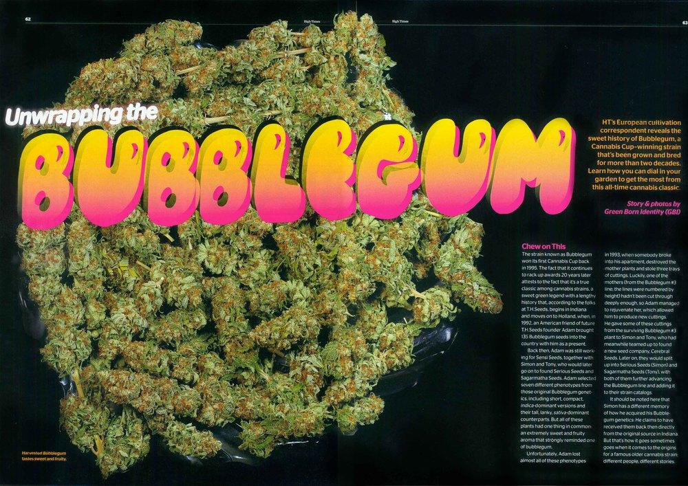 Bubblegum-page1.jpg