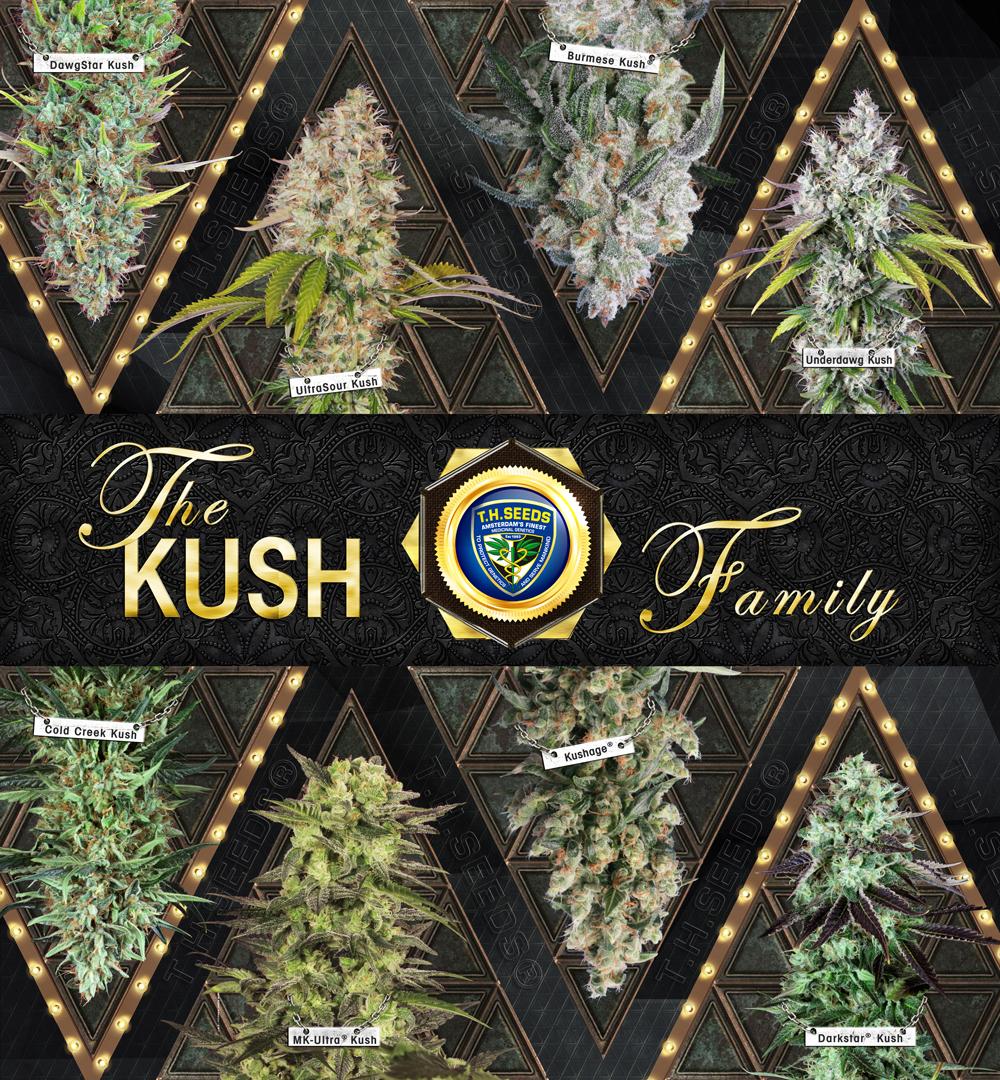Kush-Family-Finall.jpg