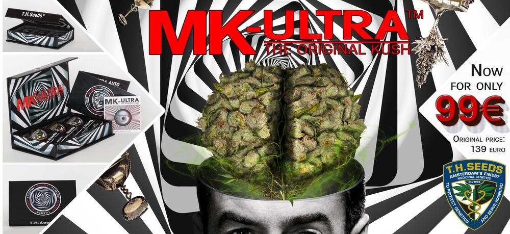 Mind Control Box