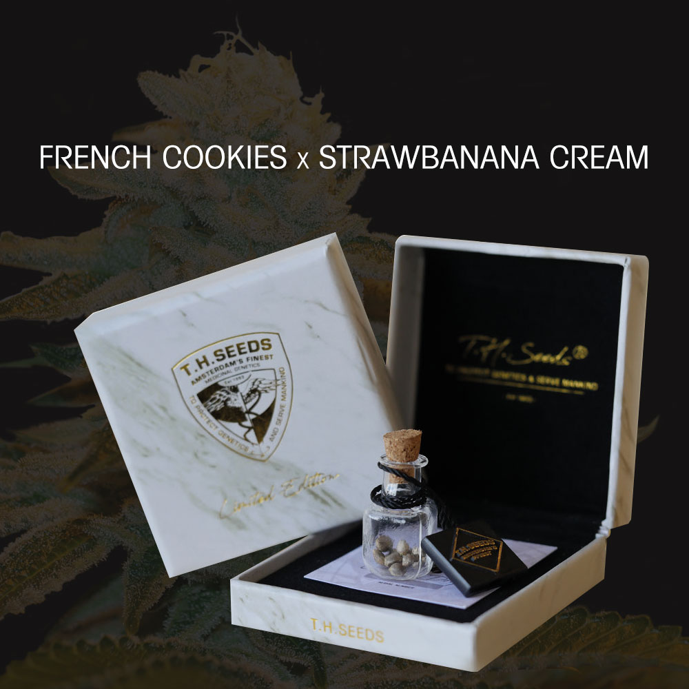 FRENCH-Cookies1.jpg