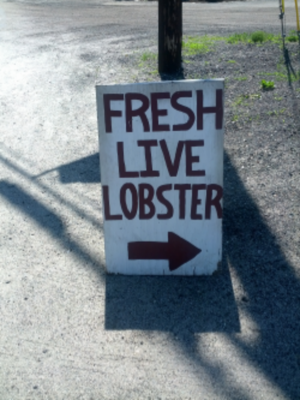 1. Fresh Lobster.jpg