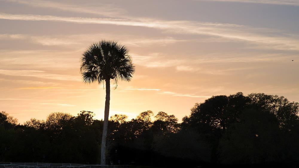 Sunset St. Augustine Florida