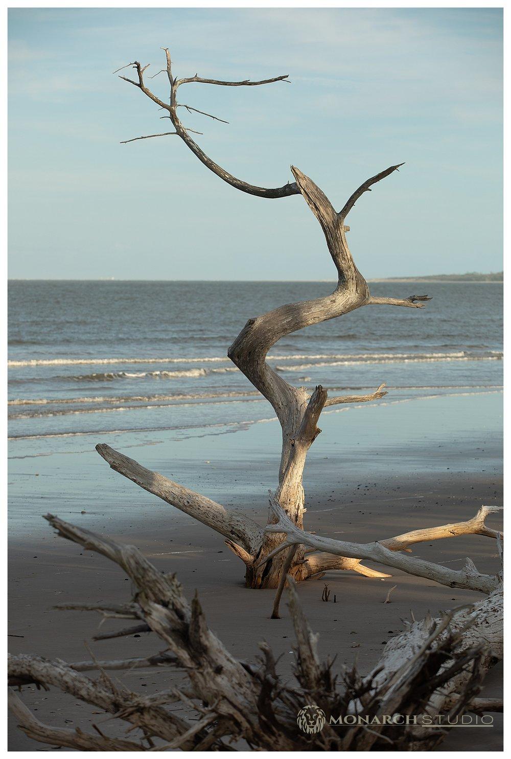 Amelia Island Surprise Proposal Photographer - 009.JPG
