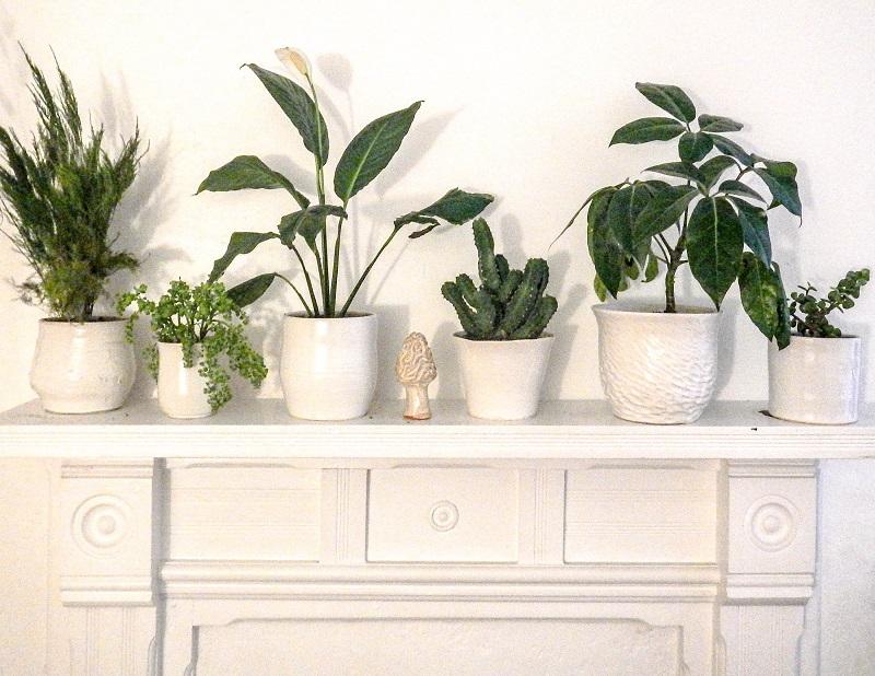 Glossy White Planters, Stoneware.JPG