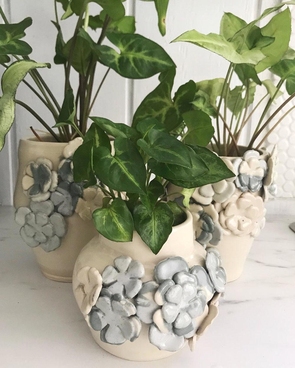Flowered Jars with Plants.jpg