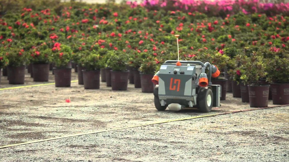 This is Harvey, a robot that shuttles around plants at nurseries, saving humans from having to do highly repetitive, strenuous work that leads to back injuries.