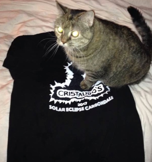 T-Shirts (not cats)