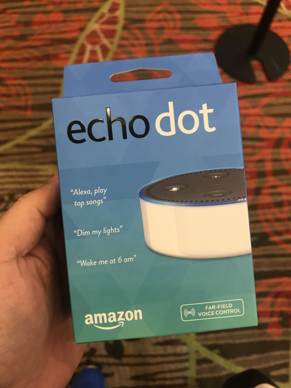 Experian Echo Dot