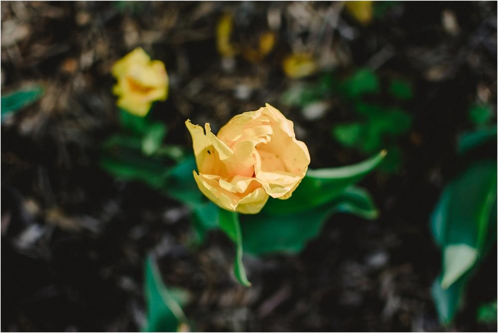 bnp-kwiatkowski-sherwoodgardens