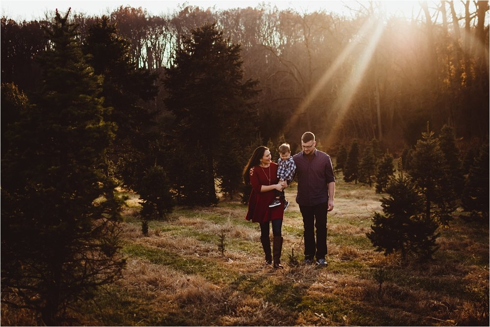 brittney-nestle-photo-struder-family-maryland-christmas-portraits.jpg