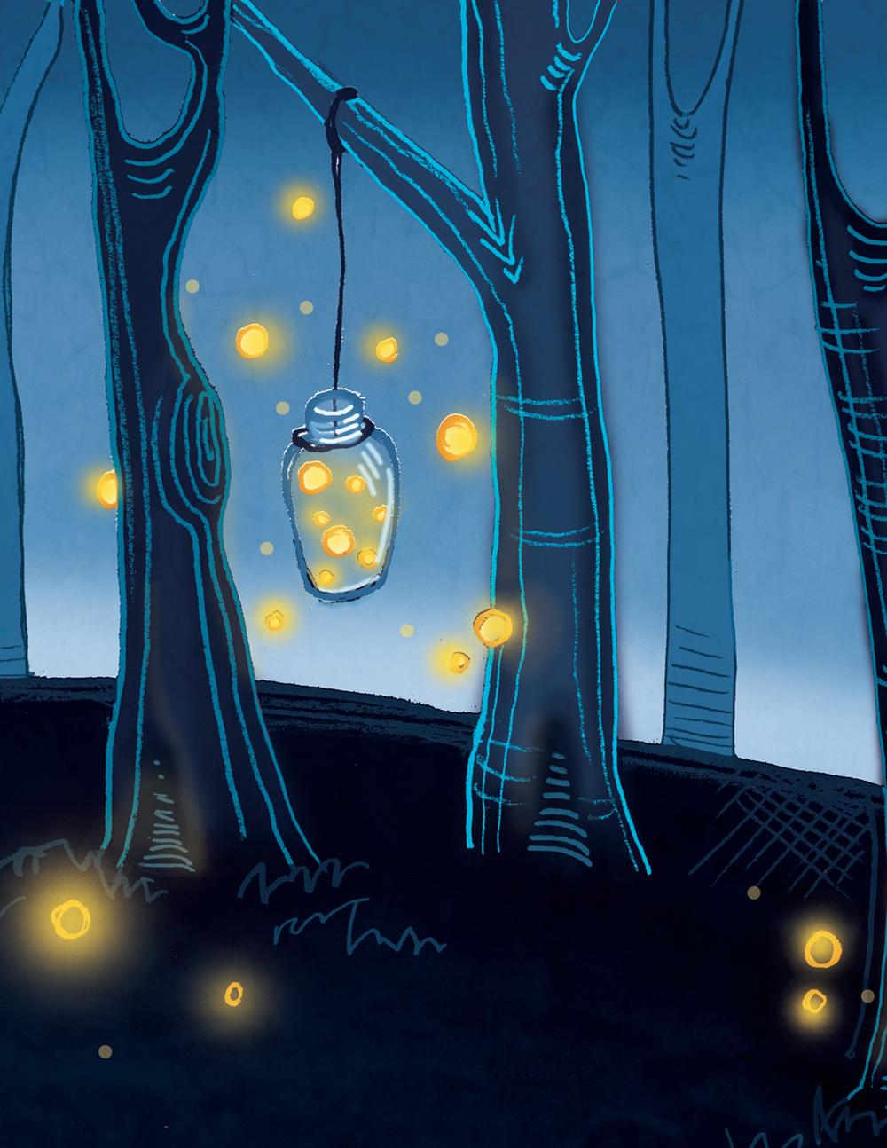 Final Firefly Illustration closeup2.jpg