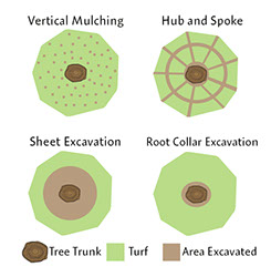 There are four patterns of soil aeration that we typically perform: Root Collar Excavations, Hub and Spoke, Vertical Mulching, and Sheet Excavations.