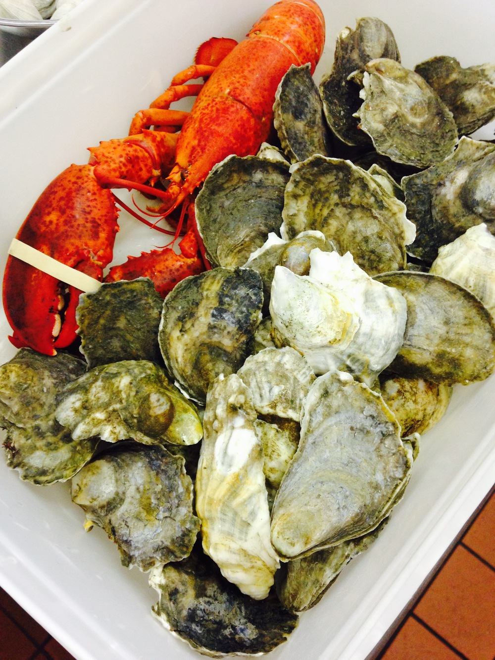 The oysters were from Island Creek Oyster Farm. No surprise there!