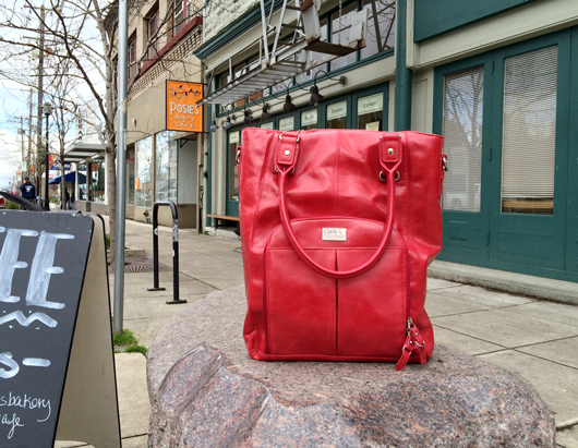 Kenton neighborhood  (bag no longer available)