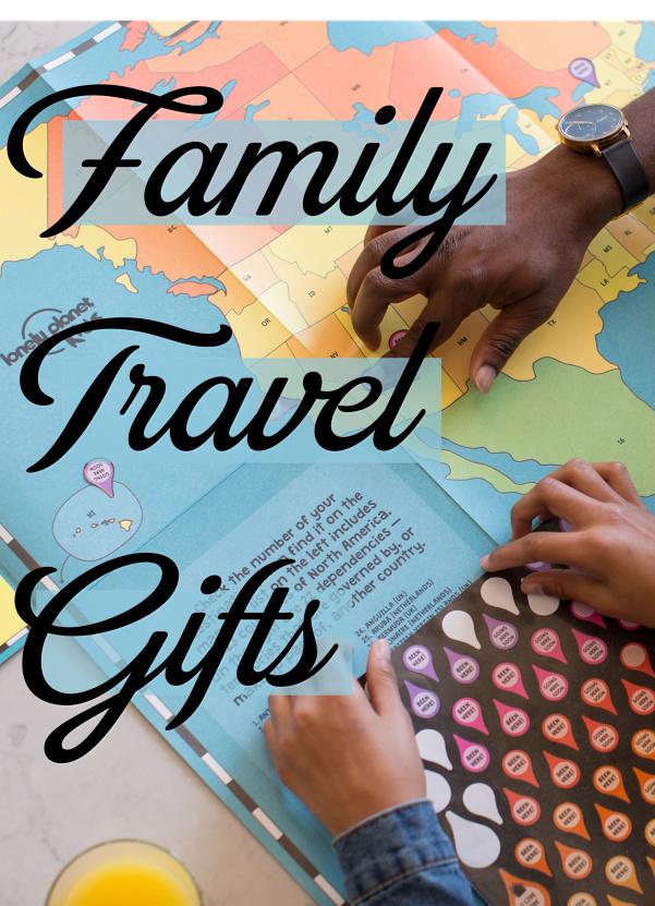 family travel gifts pin.jpg