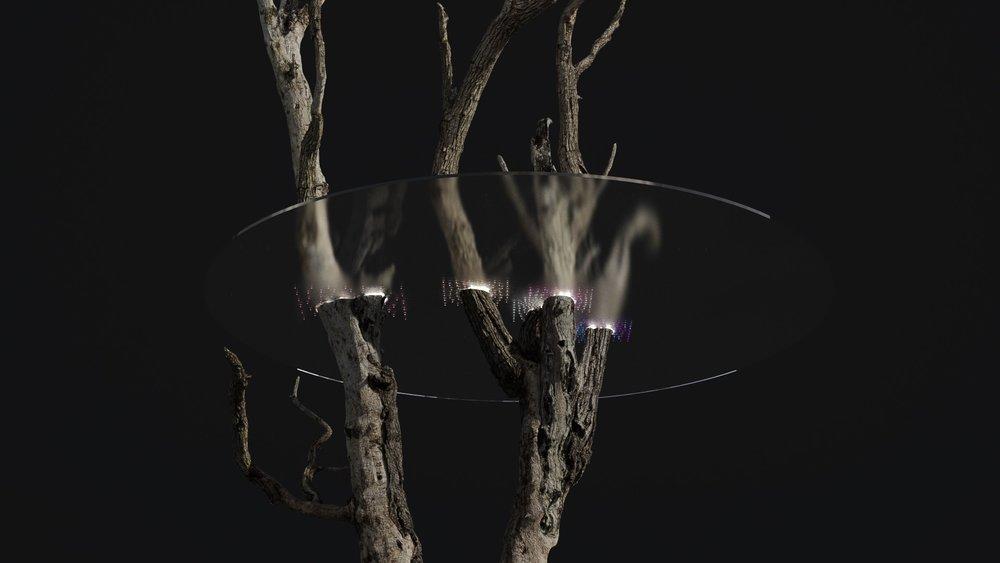 Tree Stump-10-2-1.Redshift_Cam_2.0750.jpeg