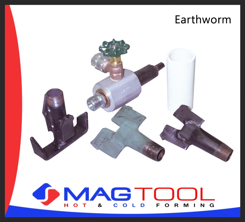 earthworm.jpg