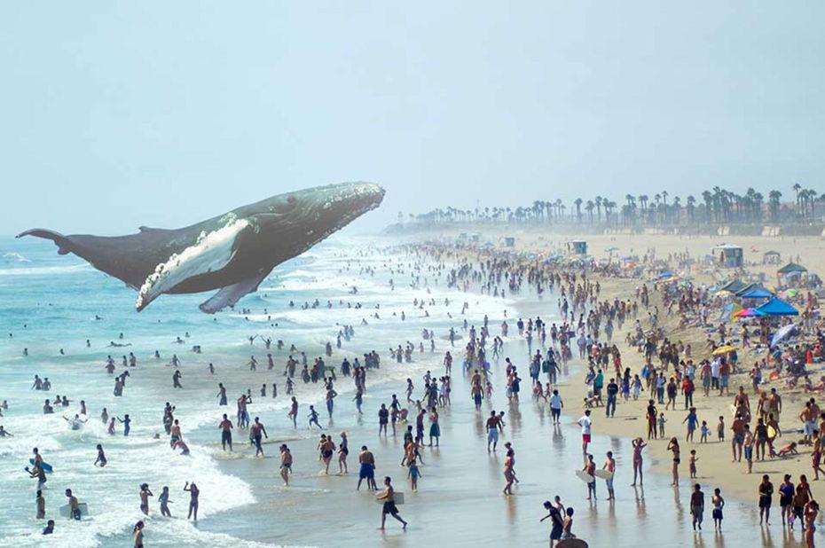 L'une des nombreuses images promotionnelles utilisées par Magic Leap pour présenter son concept de réalité mixte.© Magic Leap