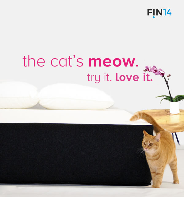 This cat knows whats purr-fectly good to sleep on -Voted#1 for a cat nap