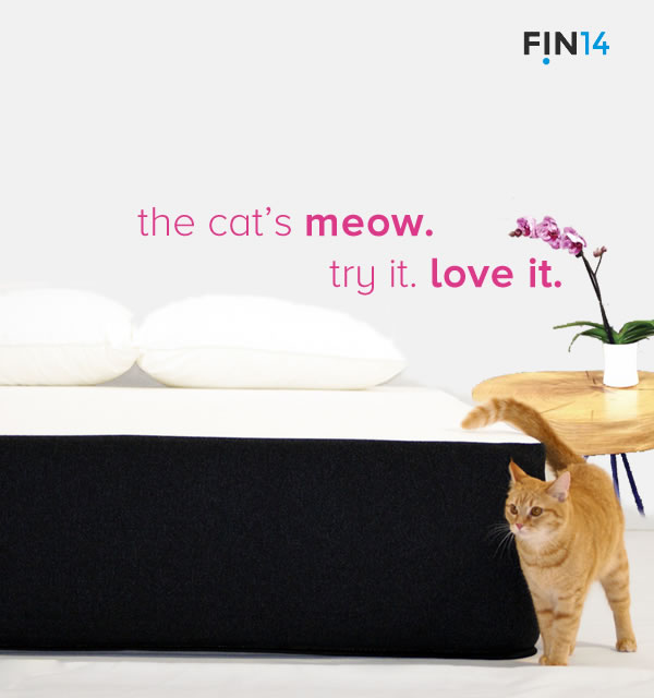 This kitty knows a fin mattress is the best for a cat nap