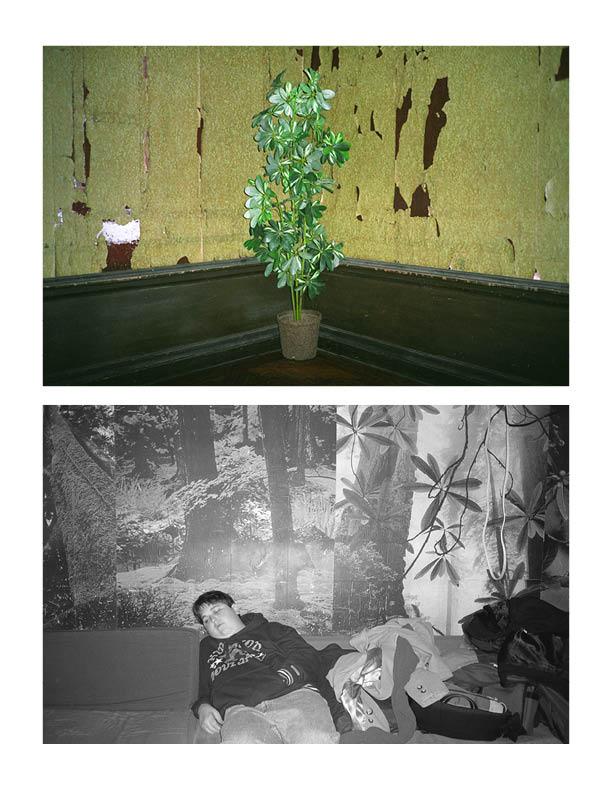 FATBOY AND PLANT.jpg