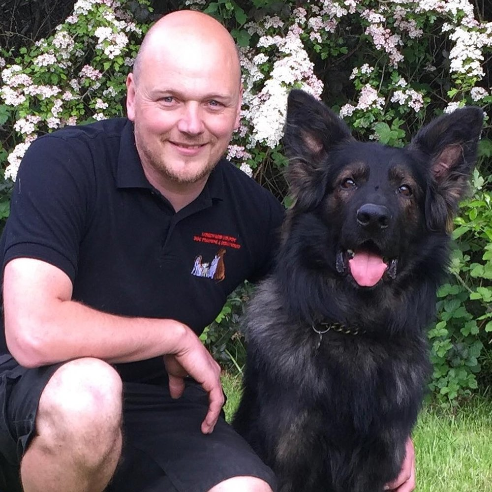 David Drew  RESIDENTIAL BEHAVIOURIST Dave is a Master Trainer with The Guild of Dog Trainers and has trained with the Cambridge Institute of Dog Behaviour & Training. David runs he own training school, Homeward Hounds, and is a senior trainer at the Elmtree Training Centre.