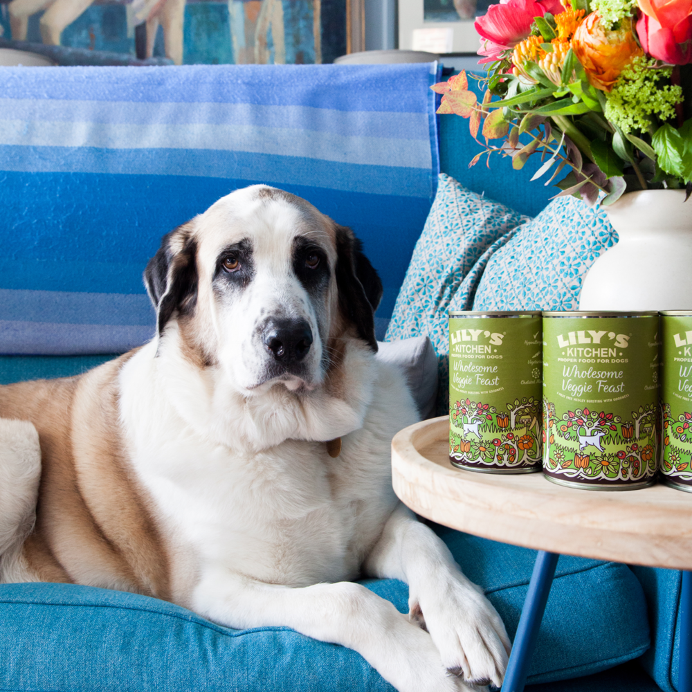 Lily\'s Kitchen and Fetch join-up for WaHF — Wild at Heart Foundation