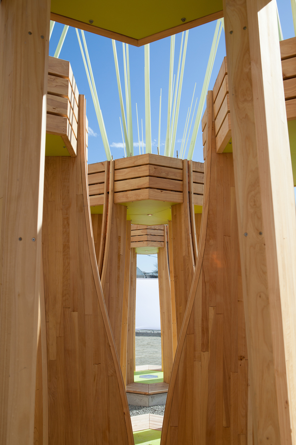 Julia_Morison_'Tree_Houses_For_Swamp_Dwellers'_2013_Photo_BridgitAnderson_CourtesyofSCAPEPublicArt5.jpg