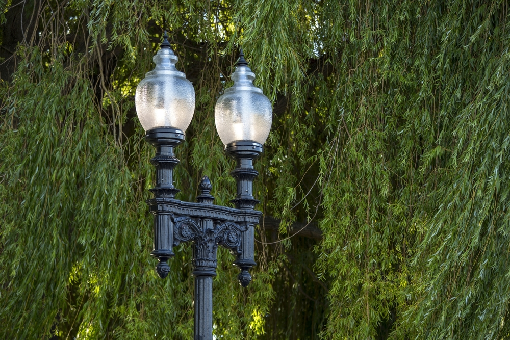 Mischa Kuball,  Solidarity Grid , 2013-2015. Boston street lamp in situ on Park Terrace, Christchurch (night, detail). Commissioned by the Christchurch City Council Public Art Advisory Group. Produced by SCAPE Public Art. Photo by Duncan Shaw-Brown.
