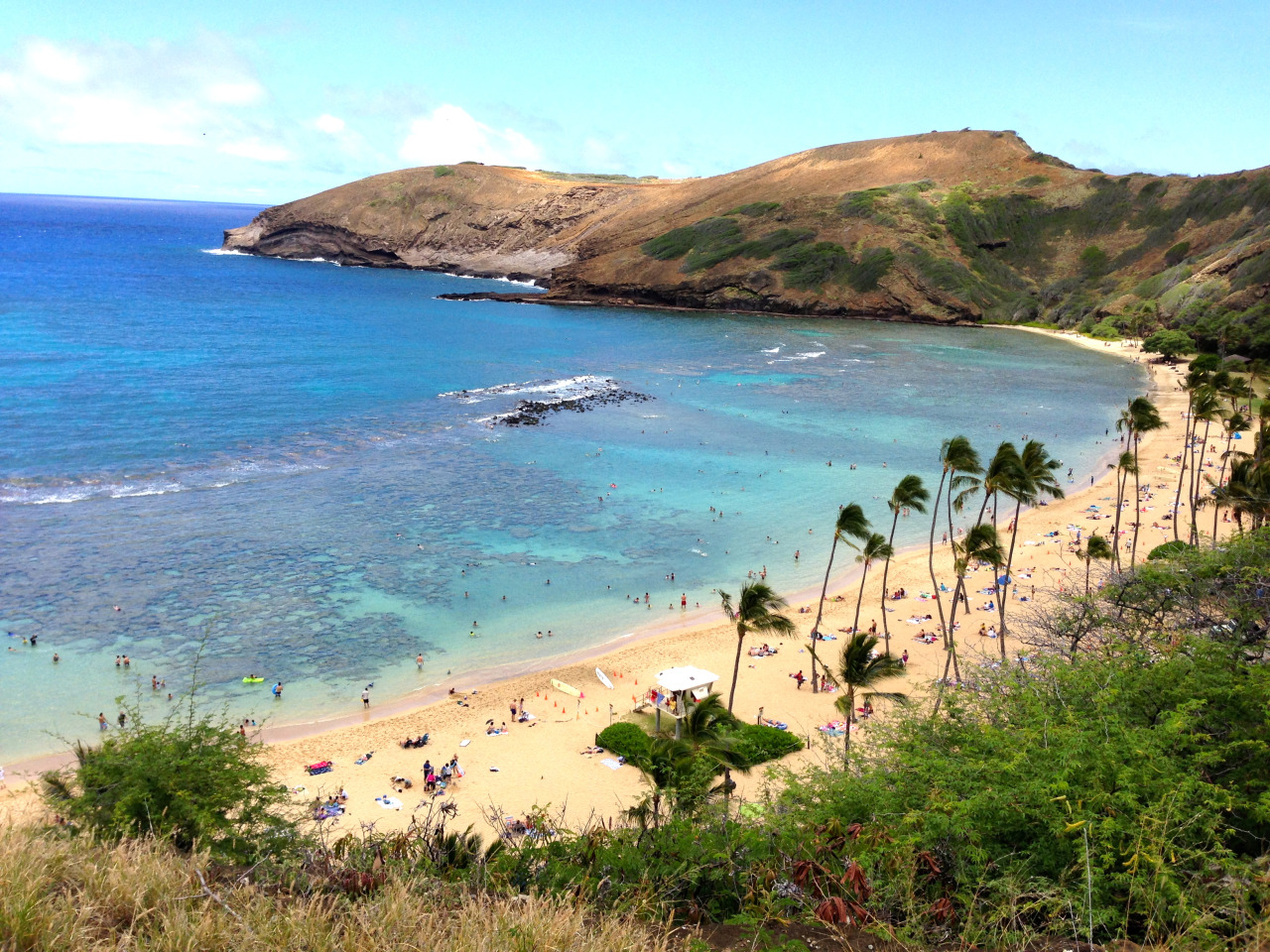 ifeeeshtravels :     Hanauma Bay, Hawaii     Beautiful!