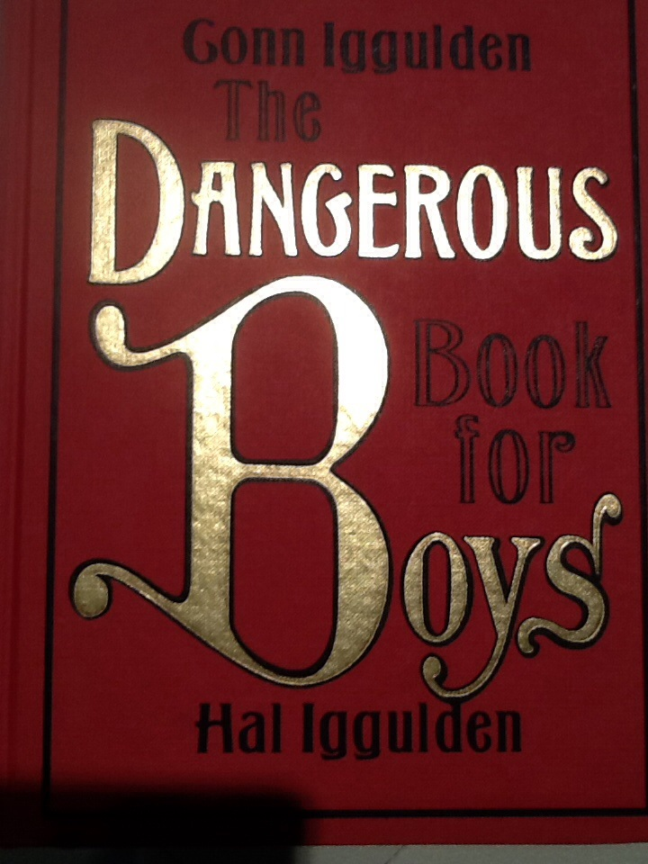The Dangerous Book for Boys    If you have brothers, a Dad, a Grandfather, boy cousins or a husband, you need this book by Gonn and Hal Iggulden.  It lays out everything a male should know from the five knots every boy should know to navigation, the moon, a history in artillery and proper grammar.  It even has a section on tanning the skin and dog tricks.   Someone gave to me as a gift and our family has enjoyed it many times over.  There is no age limit in learning from this book.  Page 109 is a section on girls…. a suitable selection of advice is given. Learn to make a go-cart, fireproof cloth, build a workbench, sample some Shakespeare or learn how to play poker.  This book could make a great gift for any occasion.